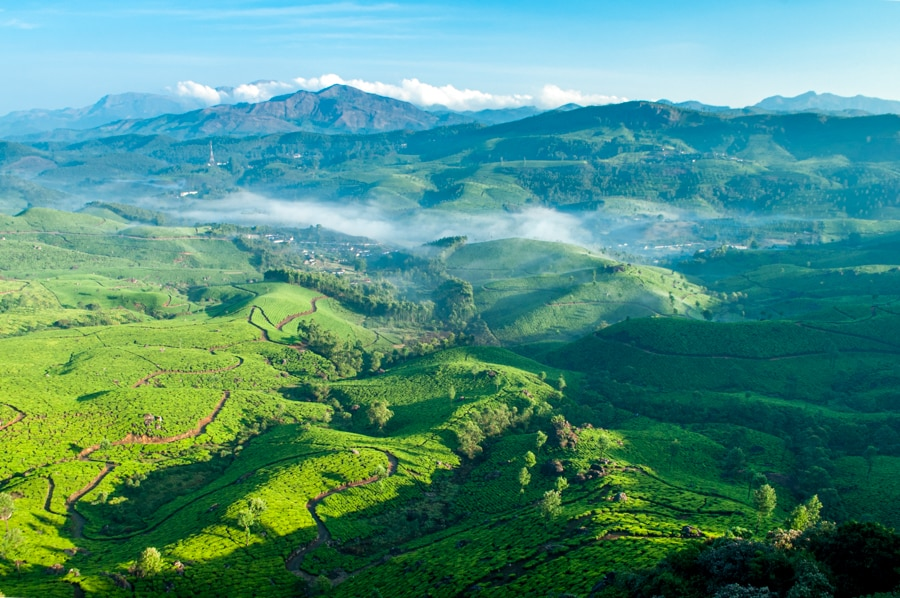 View of tea plantations at Munnar in the Western Ghats mountain range in India's Kerala state